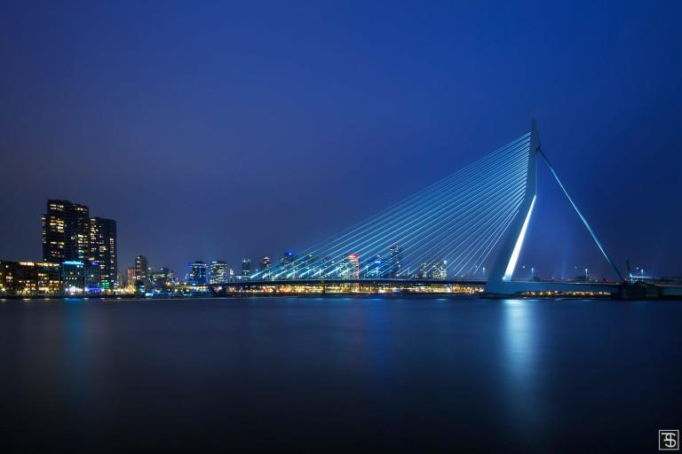 swan of rotterdam
