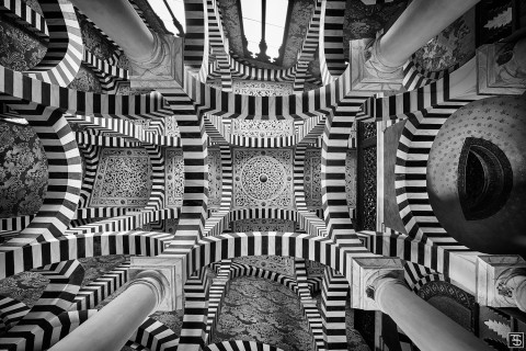 arcuate maze