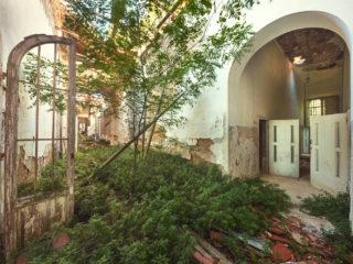 asylum garden